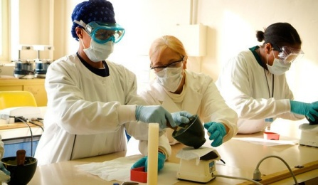 Researchers working in a laboratory