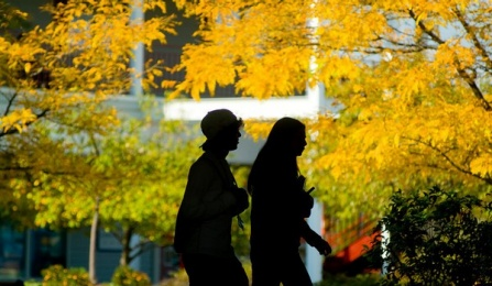 women walking in silhouette on campus