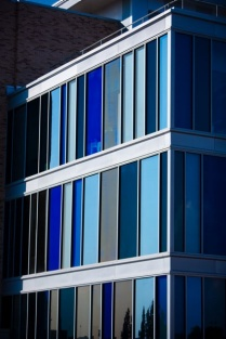 Blue windows on the Pharmacy Building.