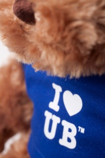 A detail photo of a brown teddy bear wearing a blue t-shirt that says I love UB.