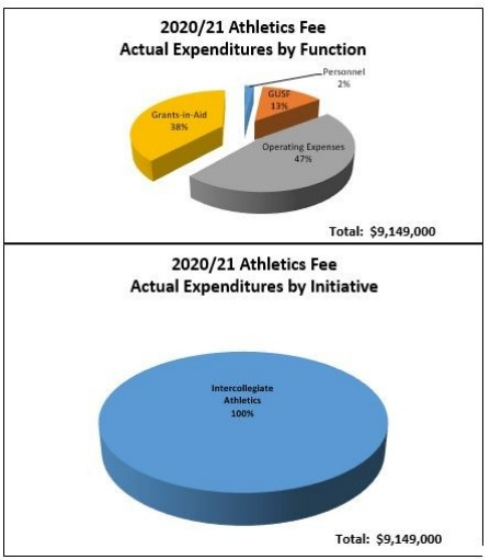 pie chart of athletics fee expenditures.