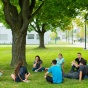 a group of students sitting under a tree on south campus.